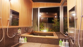 wood-paneled bathroom (with glass roof for 4 people)