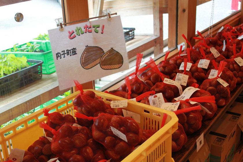 Seasonal doodies from Oda region