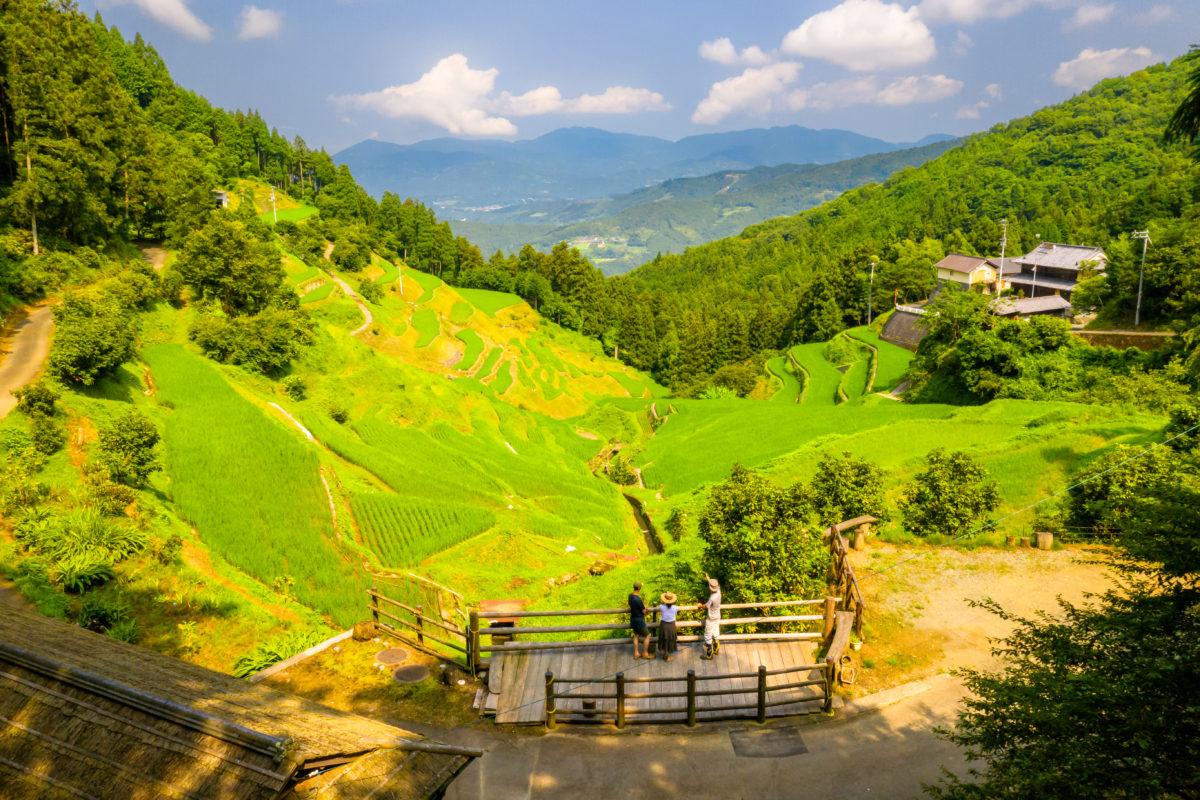 Terraced Rice Fields of Izumidani