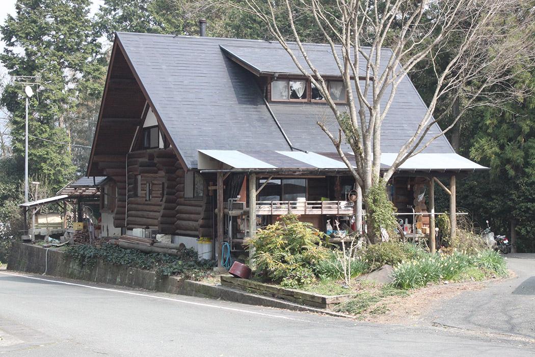 Log Tachiyama