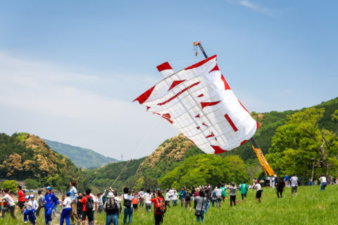 Ikazaki Kite Battle festival